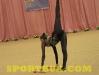 110326-ukr-gimnastyka-shkolyari-sportbuk-com-18