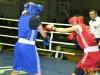 150205-ukr-box-zhinky-sportbuk-com-27